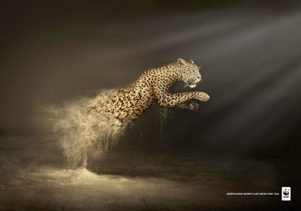 wwf-desertification-ads-1
