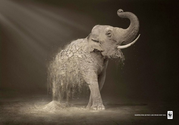 wwf-desertification-ads-3
