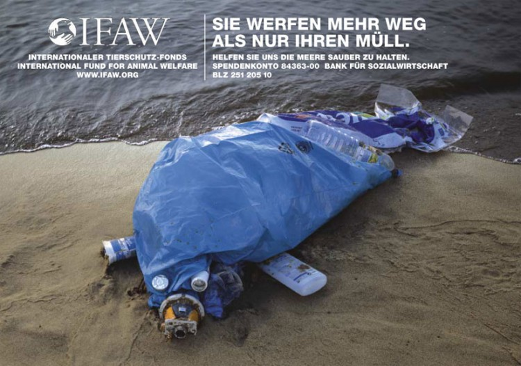 ifaw-robbe-a-2social